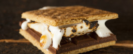 Obama Administration Attempting To Murder the S'More