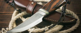 Knife Law Reforms Advance in Several States